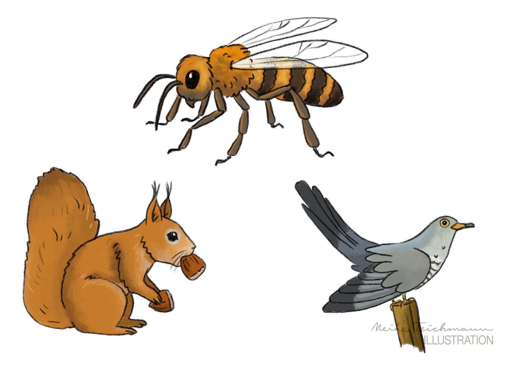 verschiedene Tiere